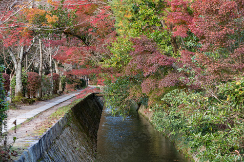 Aluminium Kyoto Kyoto Philosopher's Walk in Kyoto Japan - Fall Season