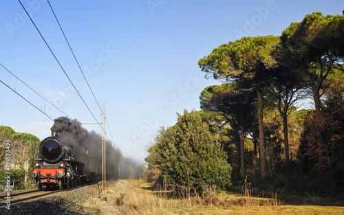 Fotobehang Spoorlijn Treno a vapore nella pineta di Cervia