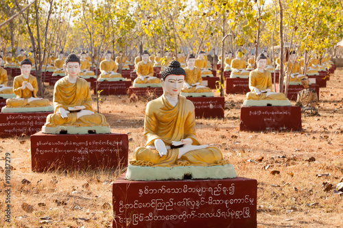 Foto op Canvas Boeddha Thousands of seated Buddha images under Bodhi trees, Monywa, Myanmar