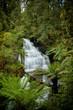 Little Aire Waterfalls, Australia, Vertical - 191887677
