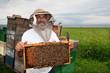 Happy beekeeper