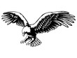 Eagle emblem black on white