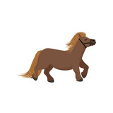 Cute brown pony, thoroughbred horse vector Illustration - 191984470
