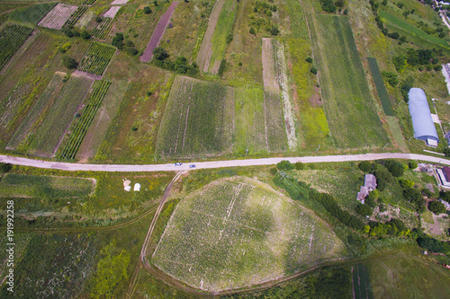 Foto Murales Aerial Shot of Road and Fields