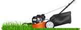Lawn mower. Mowed gr...