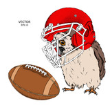 Portrait of a Owl in a helmet. Can be used for printing on T-shirts, flyers, etc. Vector illustration - 191999041