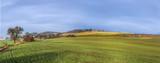 rural landscape in Bad Frankenhausen