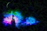 In the moonlight - 192008436