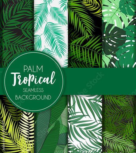 Beautifil Palm Tree Leaf  Silhouette Seamless Pattern Background Collection Set Vector Illustration