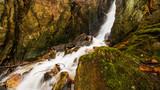 Wasserfall im Wald - 192011406