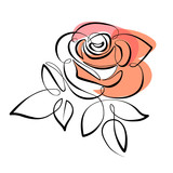 Vector red rose - 192013263