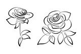 Vector black and white flowers roses - 192013287