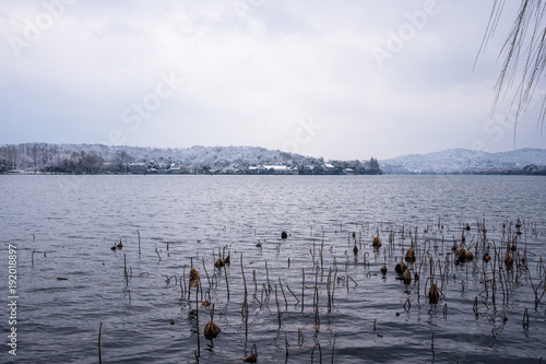Staande foto Lavendel hangzhou west lake in winter cover with snow
