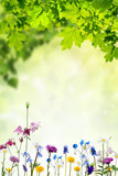 Nature background with flowers and leaves - 192035232