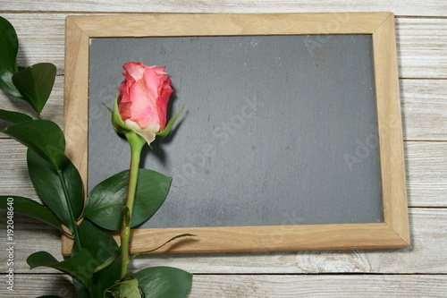 Pink Roses on a grey slate