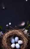 Happy Easter;  Easter eggs in nest and spring flower on table background - 192057220
