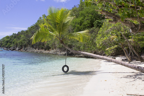 Foto op Canvas Tropical strand Tire Swing Oppenheimer Bay Saint John USVI
