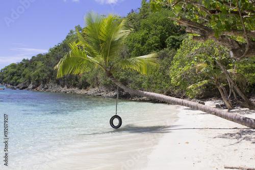 Fotobehang Tropical strand Tire Swing Oppenheimer Bay Saint John USVI