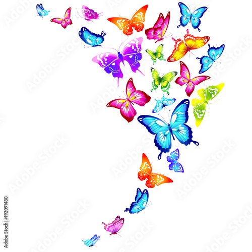 Fotobehang Vlinder beautiful color butterflies,set, isolated on a white