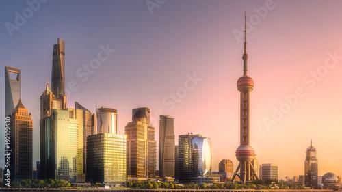 Foto op Aluminium Shanghai Night view of Shanghai skyline and Huangpu river