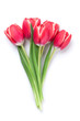 Red tulip flowers - 192111082