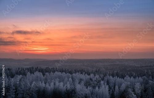 Staande foto Zalm Scenic view with beautiful sunset and frosty tree at winter evening in Finland