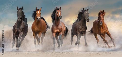 stado-koni-biegnie-szybko-w-pustynnym-kurzu-przed-dramatyczne-niebo-zachod-slonca