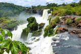 Cascate del parco naturale iguazu - 192157821