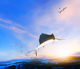 blue ,black marlin fish jumping to mid air over blue sea and sea gull flying above - 192167232