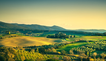 Maremma countryside and Magona forest. Bibbona, Tuscany, Italy.