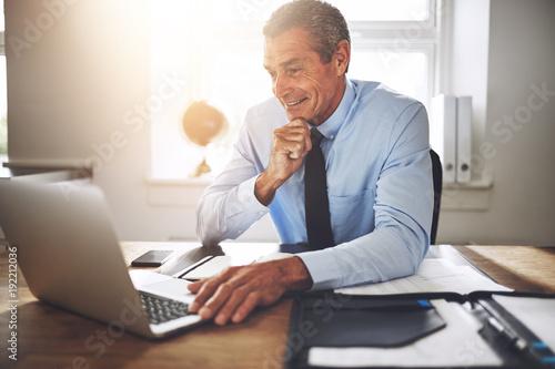 Smiling mature executive hard at work at his office desk