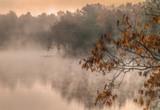 Foggy morning - 192215847