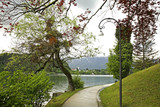 Park in Bled town. Slovenia - 192218850
