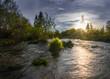 summer evening on the river. Leningrad region, Russia