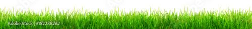Gras im Frühling - 192238262