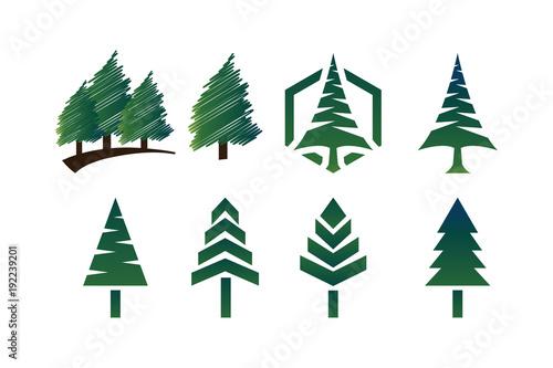collection of green pine tree template vector buy photos ap