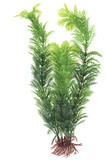 decoration for an aquarium, white isolated background