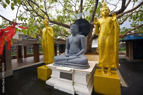 Staande foto Boeddha Famous siting Buddha statues in The Seema Malaka Temple - Gangaramaya in Colombo