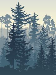 Vertical illustration of blue coniferous forest. © vertyr