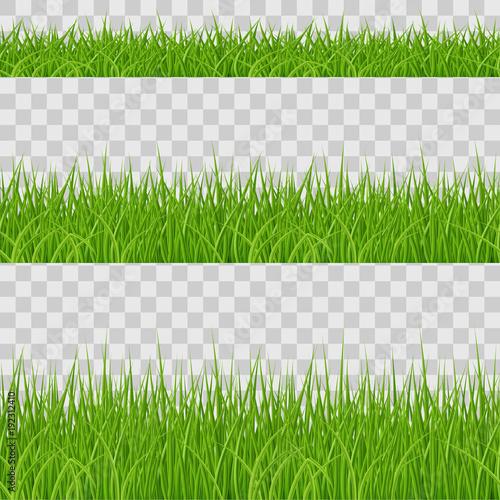 Green Grass - 192312410