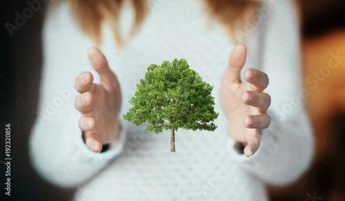 Mano di donna con modello di albero, quercia 3d, ecologia o riciclo - 192320856