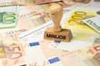 canvas print picture - Eine Lohnabrechnung, Euro Geldscheine und ein Stempel mit dem Aufdruck Minijob
