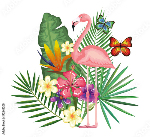 tropical and exotic garden with flemish vector illustration design