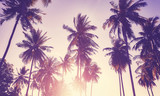 Color toned picture of coconut palm trees silhouettes at sunset, vacation concept.