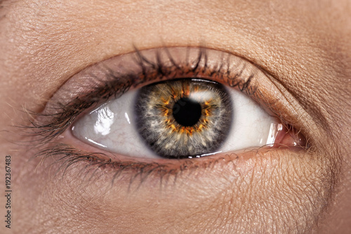 Eye close up - 192367483