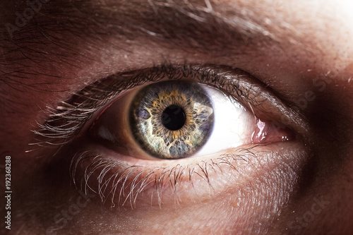 Eye close up - 192368288