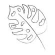 tropical leaf green spring season eco nature vector illustration sketch image