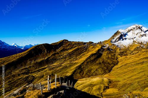 Grindelwald Mountain VII