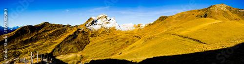 Grindelwald Mountain VIII