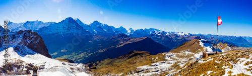 Grindelwald VII